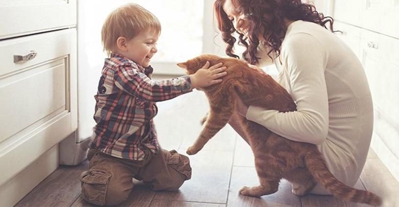 مراقبت از حیوان خانگی