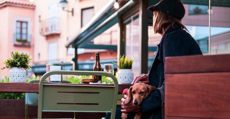 کافه مناسب برای حیوانات خانگی، پت کافه