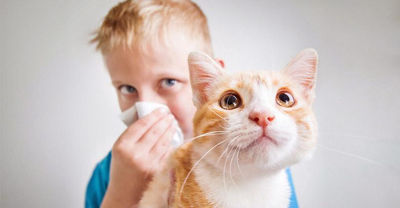 حیوانات خانگی مناسب برای کودکان مبتلا به آسم و آلرژی
