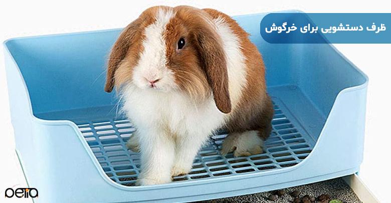تصویر خرگوش و ظرف دستشویی برای خرگوش