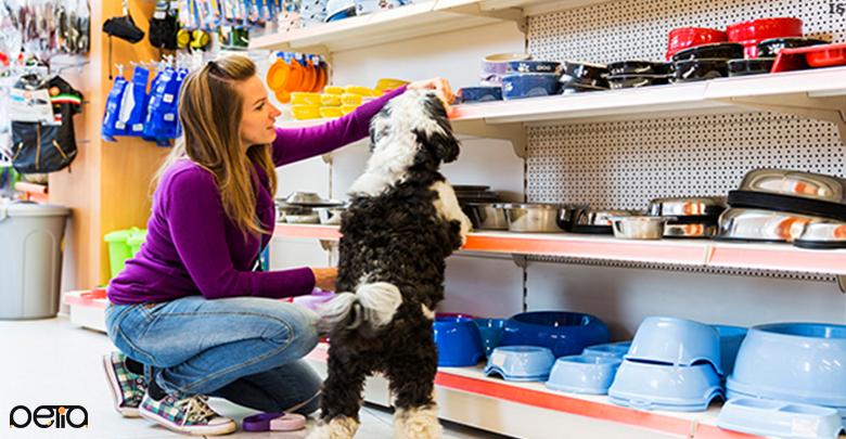 خرید وسایل سگ
