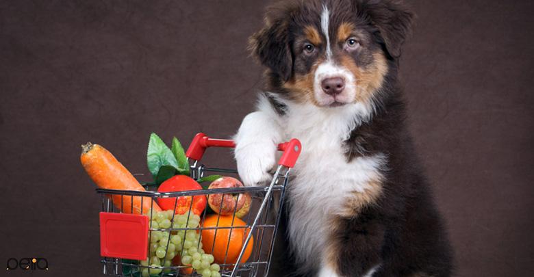 تصویری از سبزیجات در جیره غذایی سگ