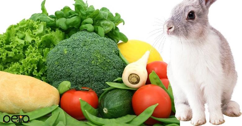 سبزیجات مورد نیاز در رژیم غذایی خرگوش
